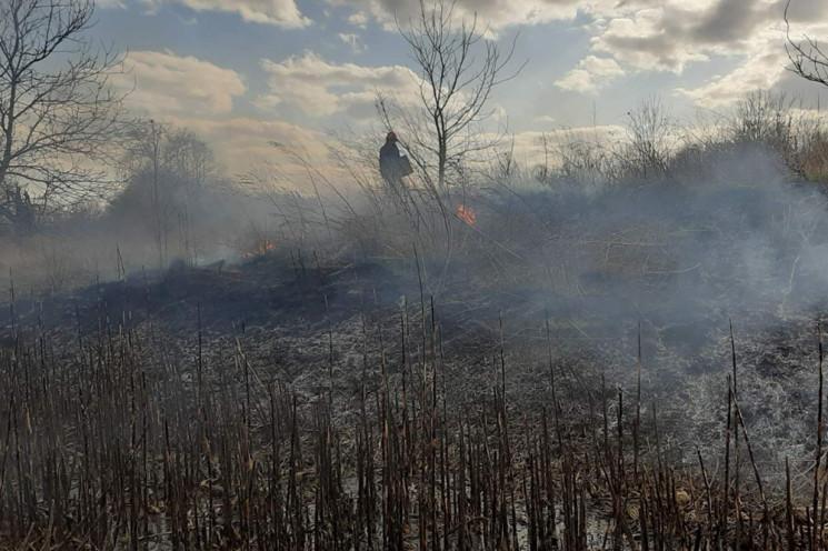 Пожежі у Чорнобилі виявлятимуть безпілот…