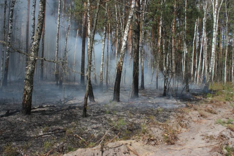 Усі пожежі в Чорнобилі локалізували: Кіл…