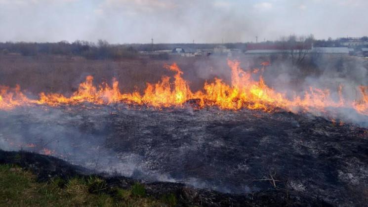 У Львівській області загасили 6 пожеж су…