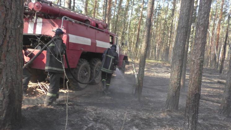 Рятувальники продовжують приборкувати тл…