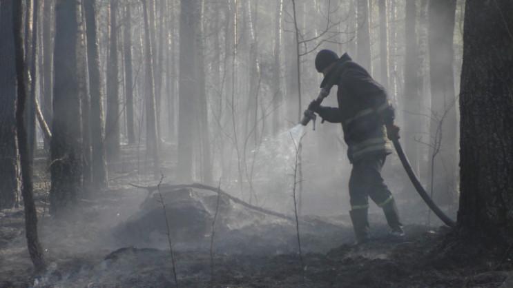 У Чорнобильській зоні досі гасять осеред…