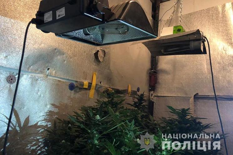 На Тернопільщині копи виявили цілу облаш…