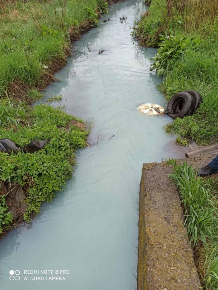 Екологи вважають, що річка Тяжилівка поб…