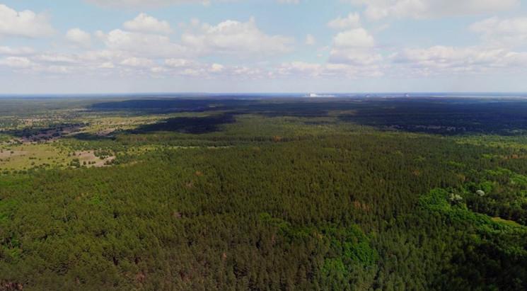 У Чорнобильській зоні з'являться камери…