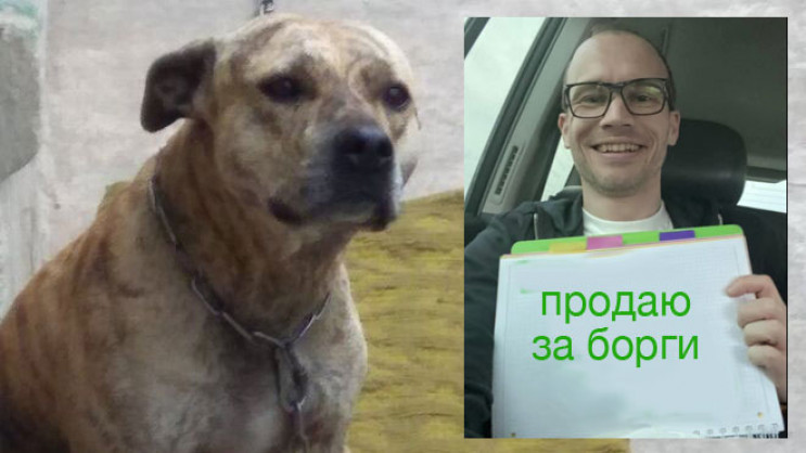 Примара депутата Брагаря: Як в українців…