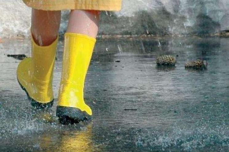 Мокрий і ще мокріший: Синоптики дали про…