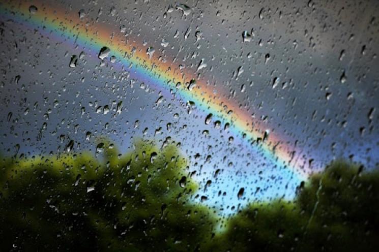 В неділю в Харкові все ще дощитиме…