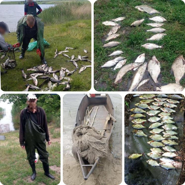 На Днепропетровщине посчитали браконьеро…