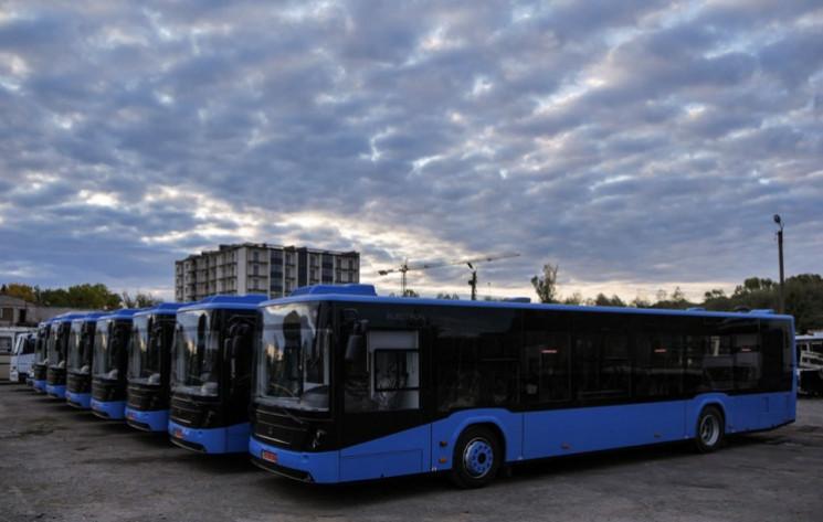 Сколько автобусов выехало на дороги Зака…
