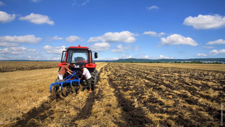 Ще одне свято: Українські фермери відтеп…