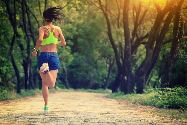 Рослинна дієта та помірні тренування: Як…