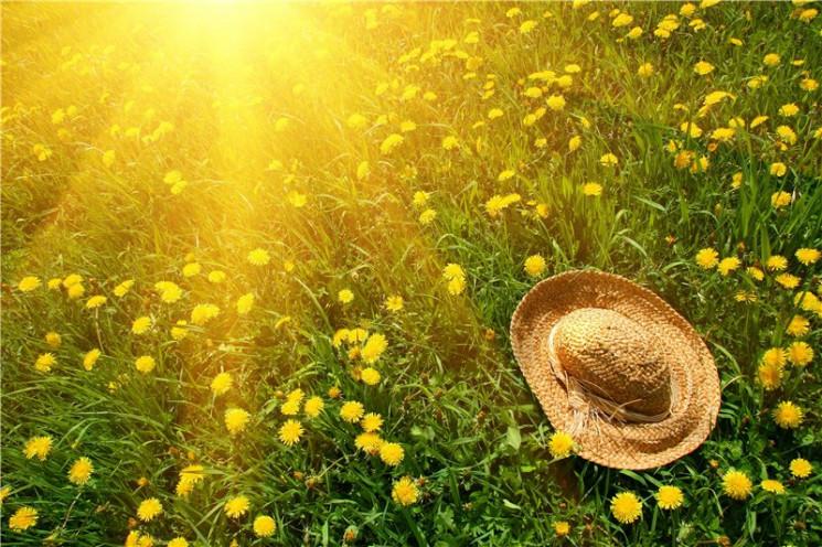 Какой будет погода в Украине в июле: Про…