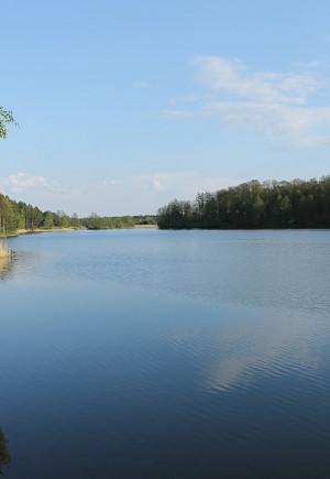 Кришталева вода в оточенні лісів: Чому в…