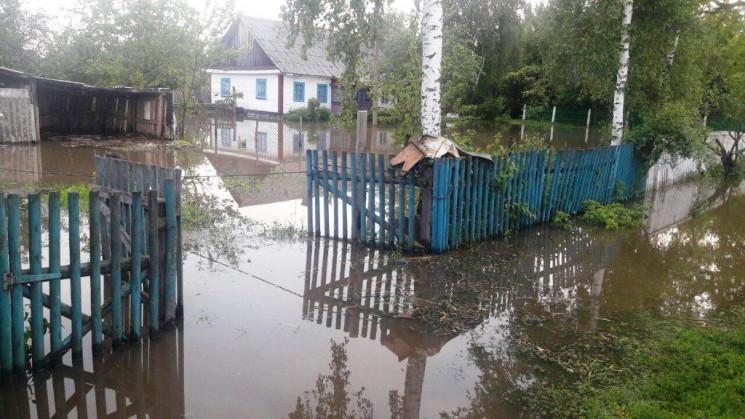 У Стрийському і Старосамбірському района…