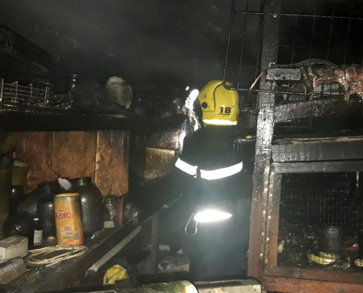 В утреннем пожаре на Херсонщине погибли…