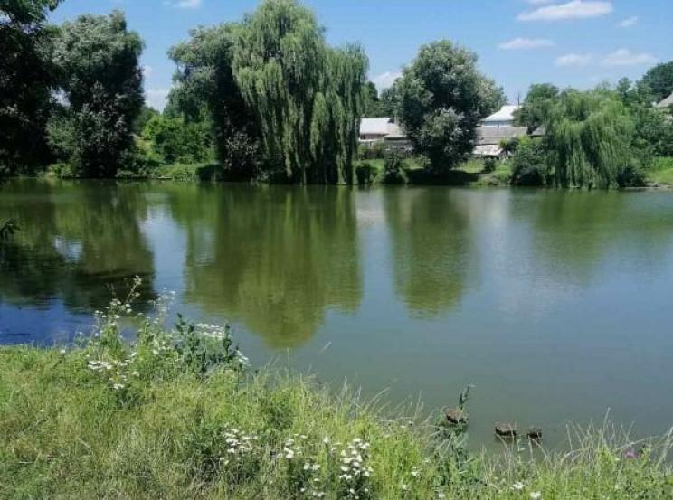 У Крижопільському районі потонув пенсіон…
