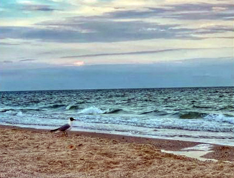На Запоріжжі харків'янин пустився в морс…