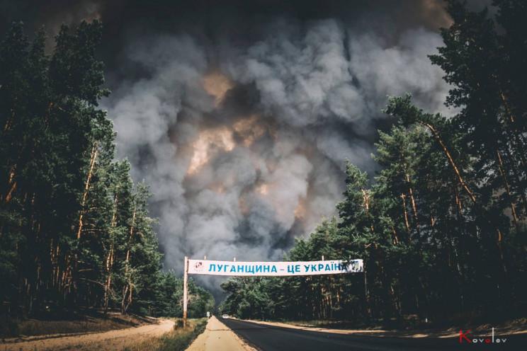 В Луганській області вигоріло п'ять тися…