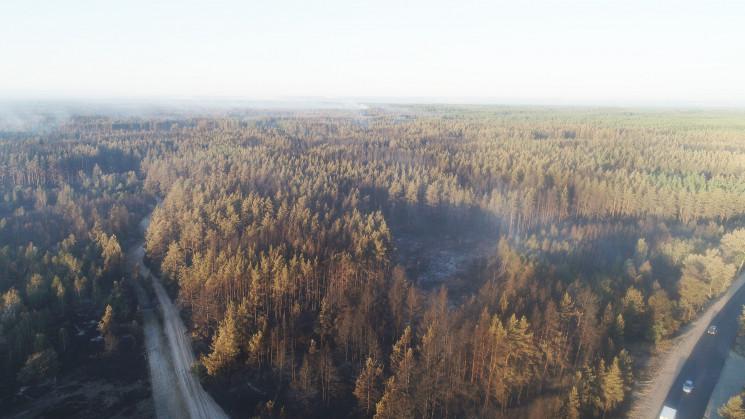 На Луганщині загасили ліс, що палав кіль…