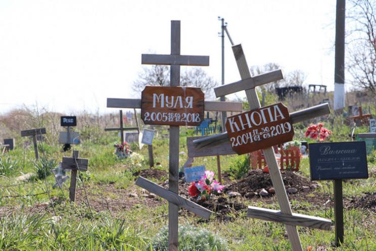 В райцентре Запорожской области жители п…
