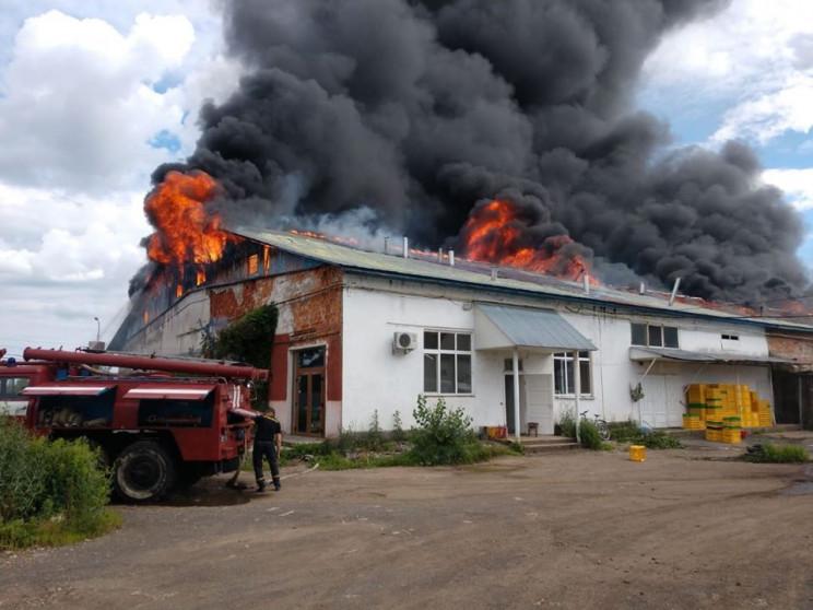 Пожежа у Хусті: Рятувальники гасять вого…