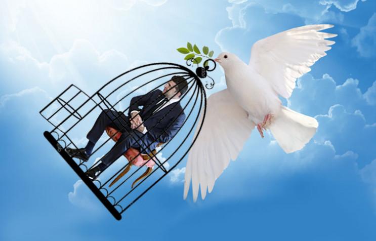 """Война между """"голубями мира"""": Что будет д…"""