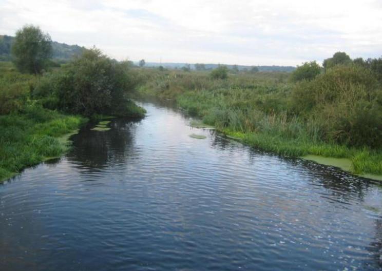 У Ходорові жінка втопилася у річці (ФОТО…