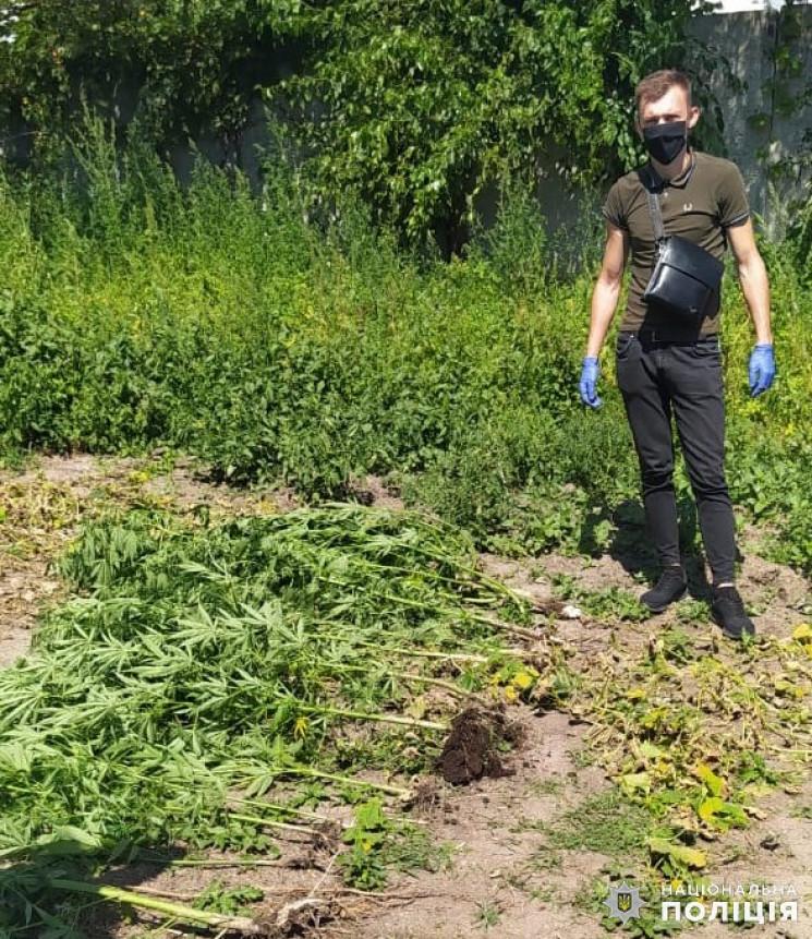 Хмельничанин попався копам на вирощувані…