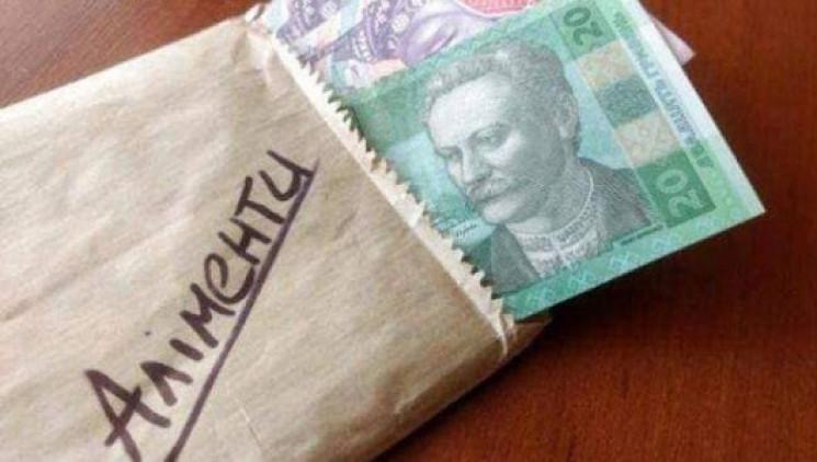 Ужгородец оплатил почти 190 тыс. грн али…