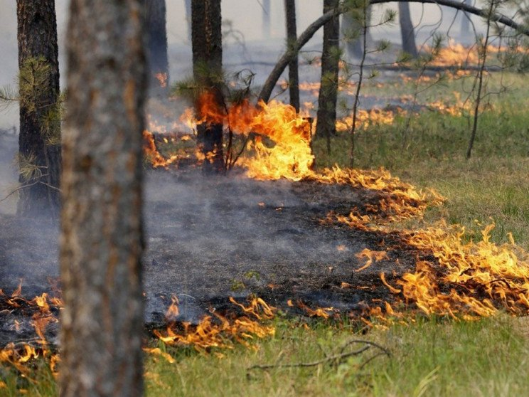 На Франківщині утримується пожежна небез…