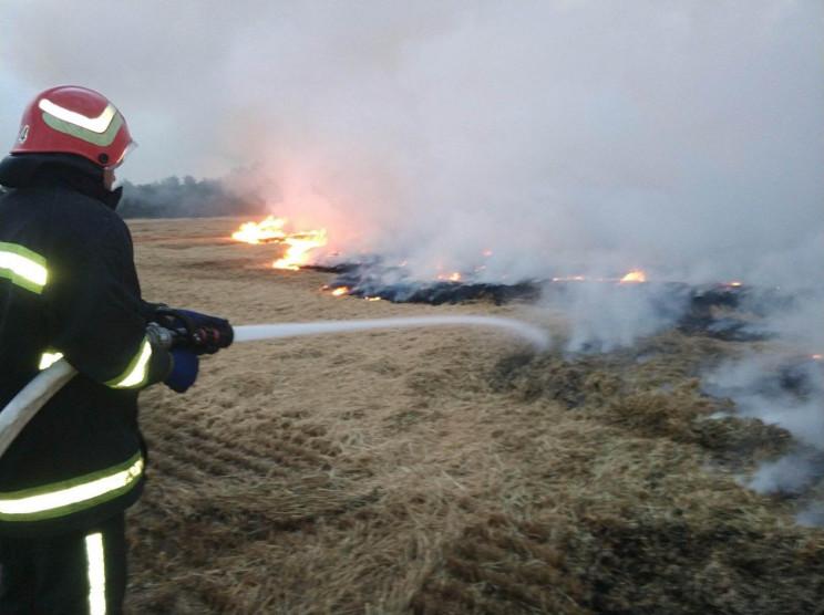 На Вінниччині згоріло понад 10 гектарів…