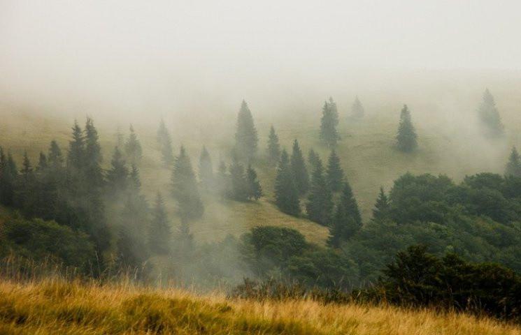 Закарпаття: Прогноз погоди на 15 серпня…