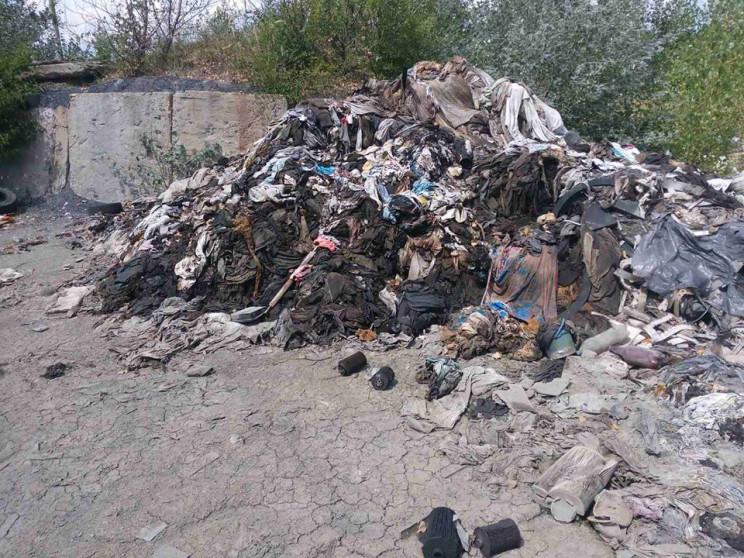 На Луганщині біля будинків знайшли токси…