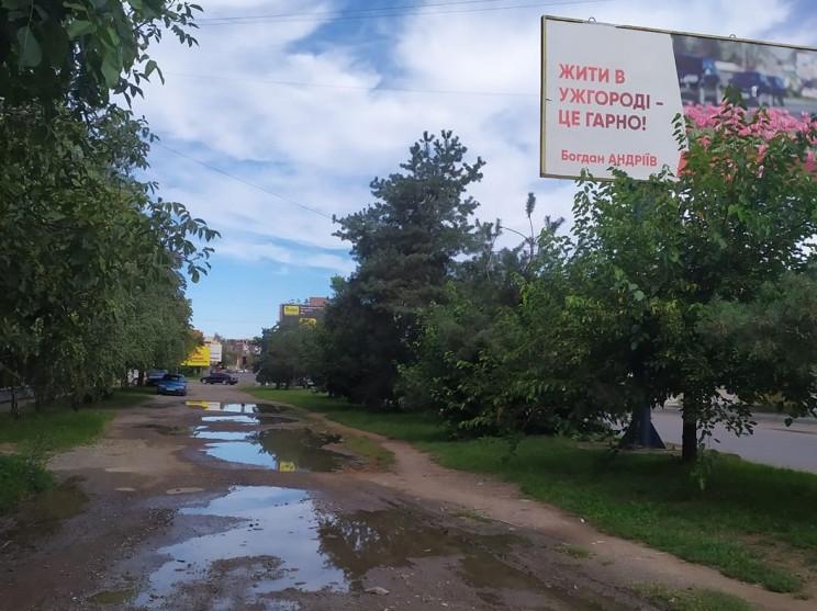 """""""Вбити"""" Андріїва: Чи проголосують ужгоро…"""
