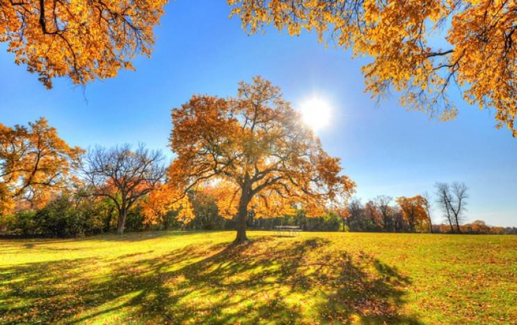 Поки — літо, а з п'ятниці — осінь: У най…