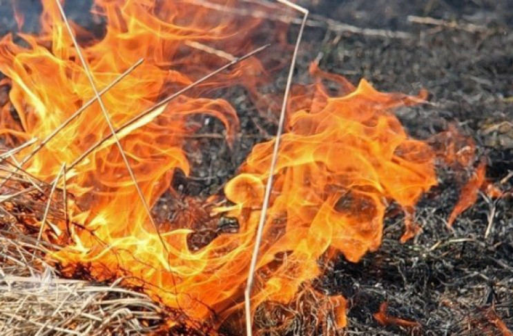 На Ужгородщині горіла суха трава і чагар…