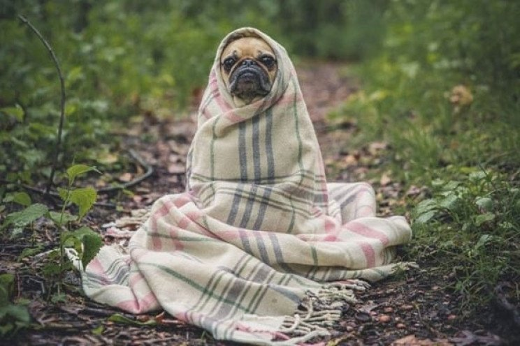 Синоптики попереджають про різке похолод…