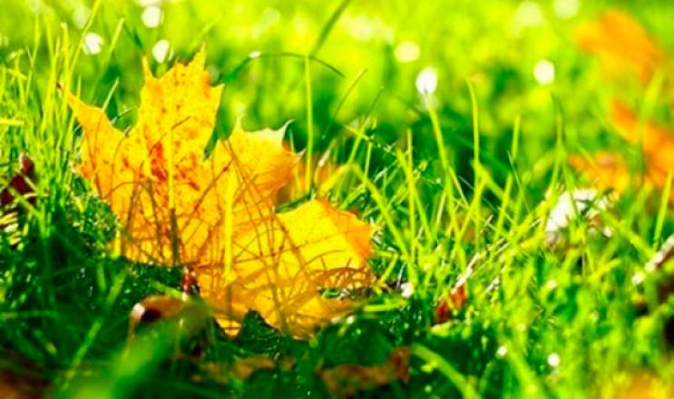 Закарпаття: Прогноз погоди на 20 вересня…