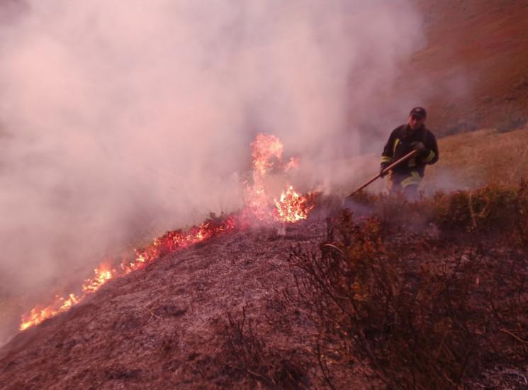 На Воловеччині вигоріло 4 гектари сухої…