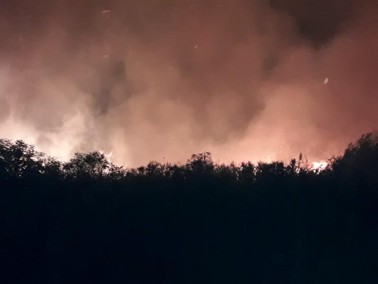 На Херсонщині палав острів у Дніпровськи…