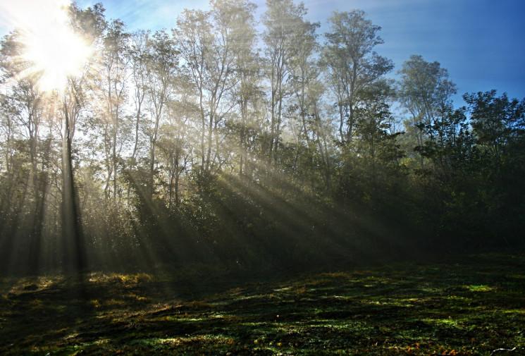 У Сумах буде ясно та по-осінньому тепло…