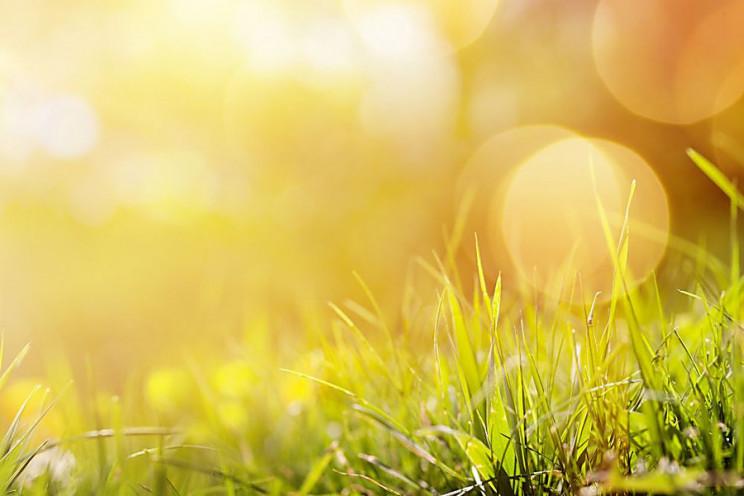 Сумчанам прогнозують сонячну і по-осіннь…