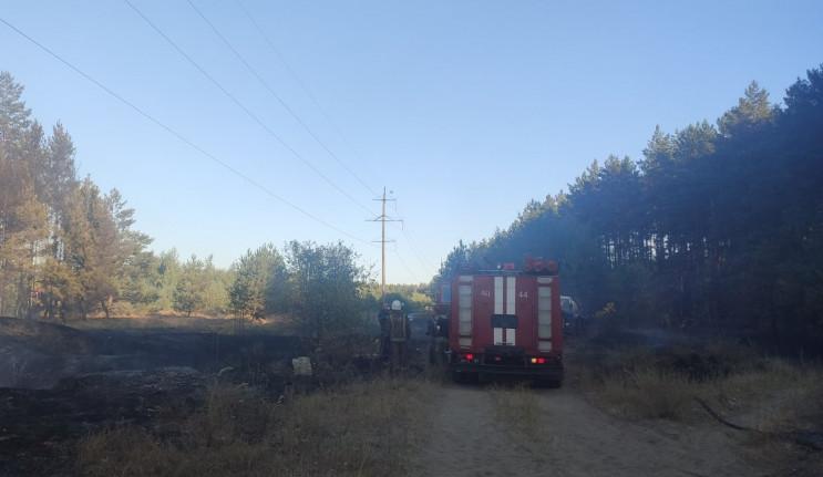 На Харьковщине потушили пожар, который у…