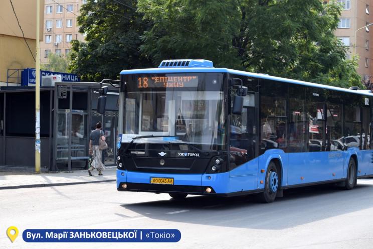 В Ужгороді встановлюють нові автобусні з…