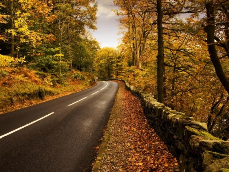 Прикмети 9 жовтня: Кого треба остерігати…