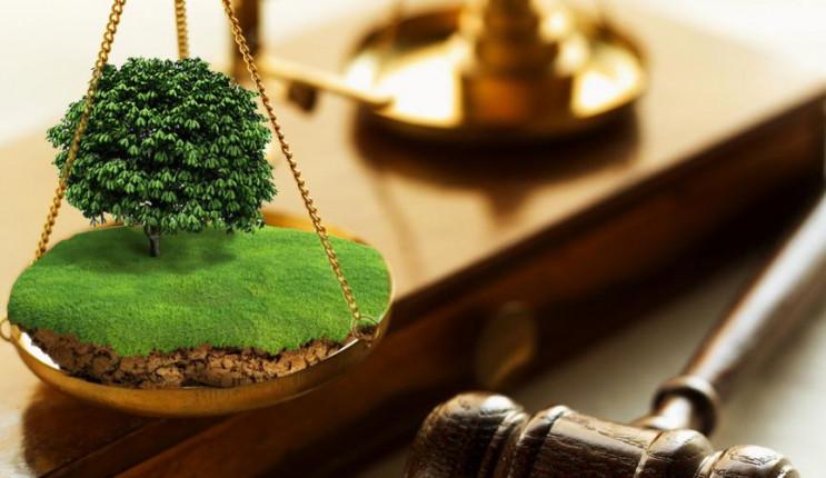 Військові прокурори відстояли в суді зем…