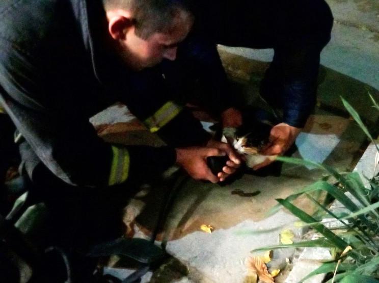 На Херсонщине спасатели вынесли с пожара…