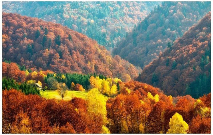 Закарпаття: Прогноз погоди на 27 жовтня…