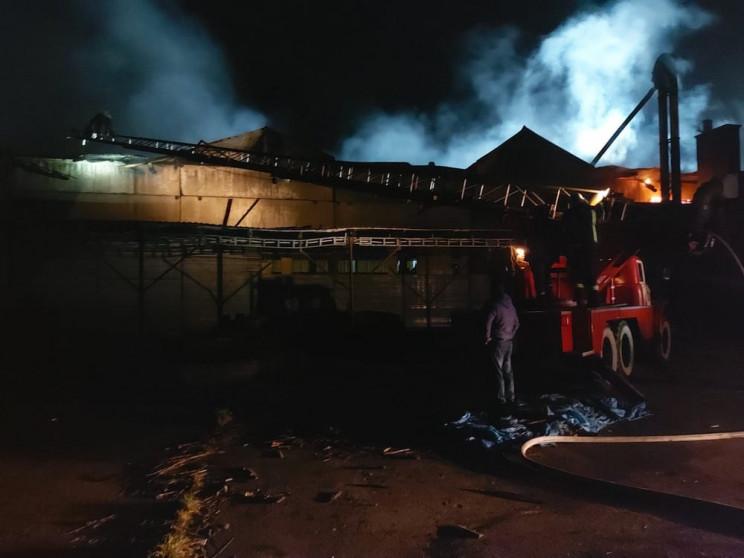 У Ковельському районі загасили пожежу на…