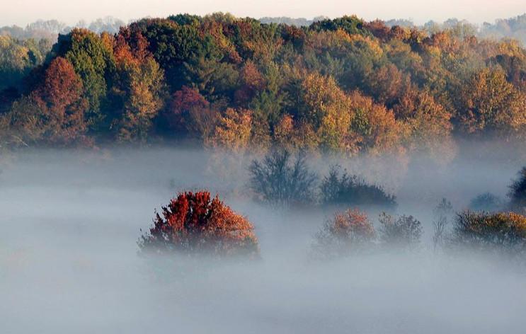 Львівщину огорнув туман…